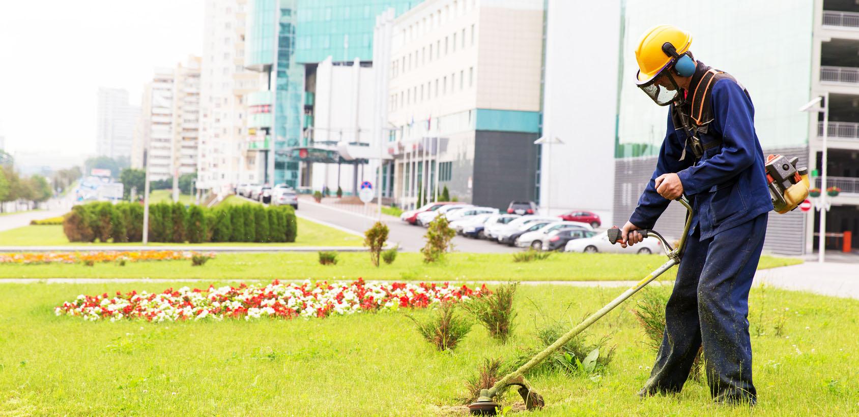 City landscaper mowing lawn wih gas trimmer